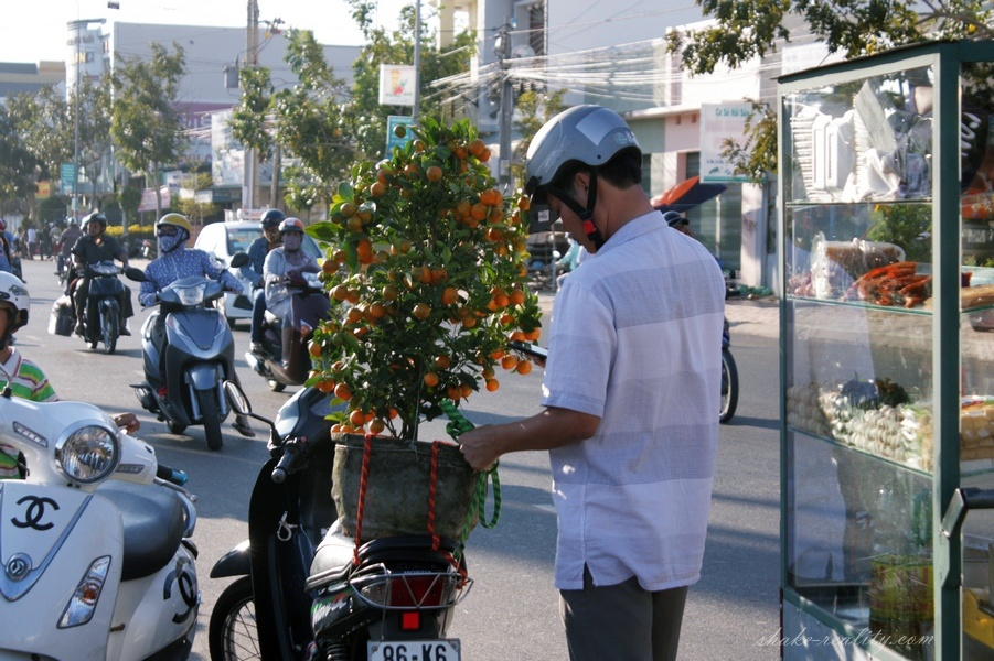 vietnam_new_yearIMG_0050.030