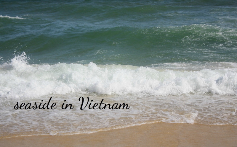 берег Южно-Китайского моря во Вьетнаме | фото Shake-Reality.com